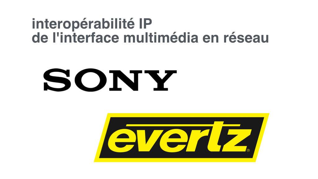 Sony Evertz.001.jpg