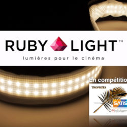 Rubilight Trophees.001.jpg
