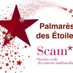 Palmares Scam 2015.001.jpg