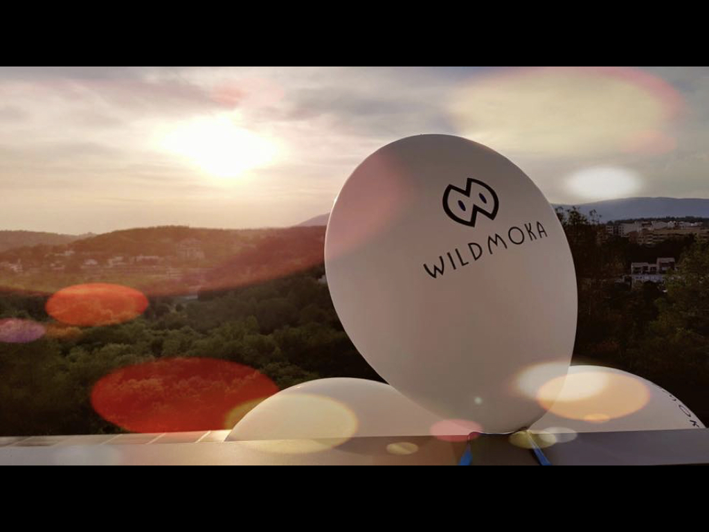 WildmokaBalloon.jpeg