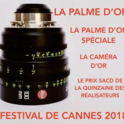 LeicaCannes2018main.jpeg