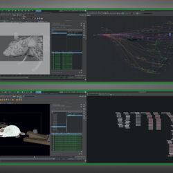 FIX_Studio.jpg