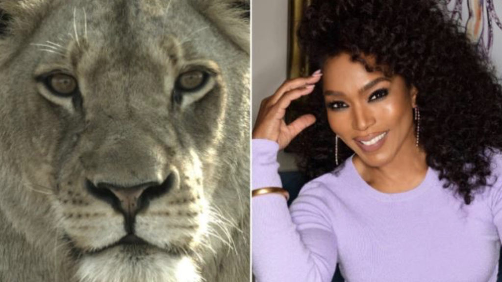 Angela Bassett with Malika the Lion Queen for Plimsoll and Fox © DR